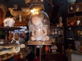 rust belt market baby in glass